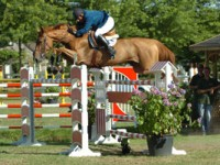 NARCOTIQUE DE MUZE IV