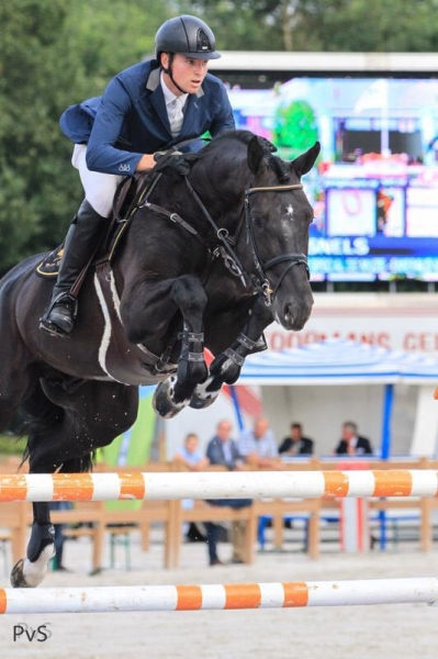 Six-year-old son of I'm Special de Muze Belgian champion