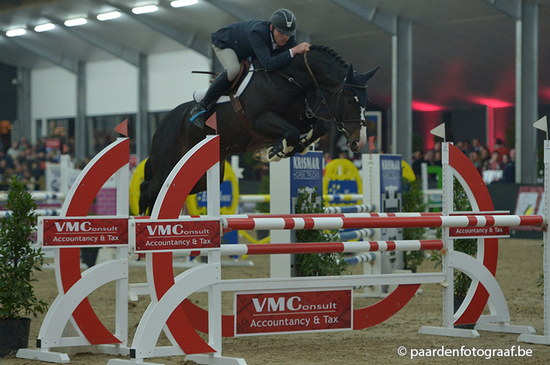 FINALE PAVO HENGSTENCOMPETITIE
