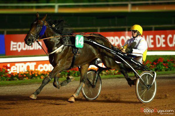 Stal de Muze strikes in trotting as well